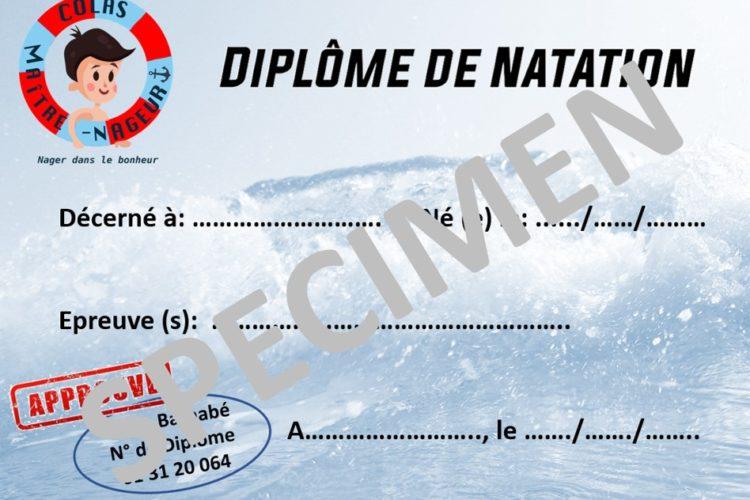 Swimming Diploma